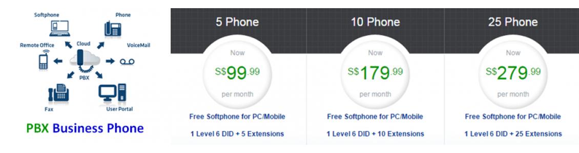 PBX Business Phone